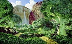 Картины из овощей - художник Л. Уорнер