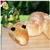 Хлеб Змейка от miss